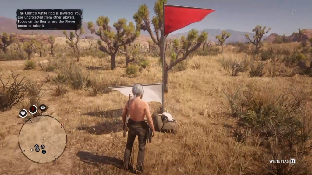 Red Dead PVP