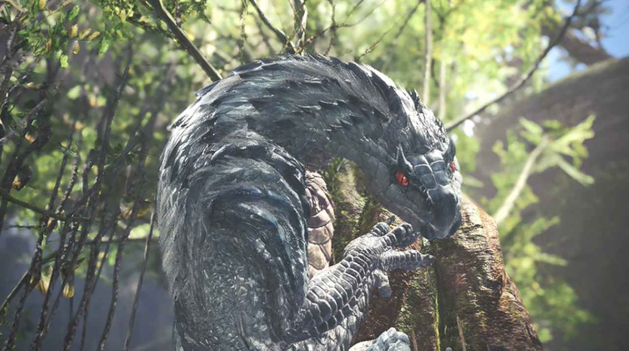 Monster Hunter Tobi Kadachi