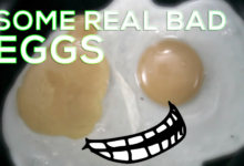 Photo of A Dirty Lawyer's Dozen of Bad Eggs: A List