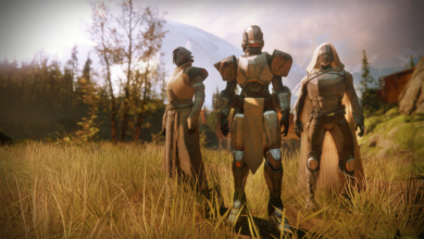 Photo of Bungie Changes Up Rules for the Destiny 2 Crown of Sorrow Raid Launch