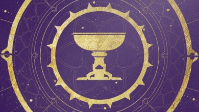 Photo of Destiny 2 Crown of Sorrow Raid Launches with Season of Opulence on Day 1