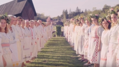 Photo of Emotional Absence and Isolation in Midsommar