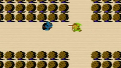 Photo of Video: Which Zelda Game Has The Best Lost Woods?