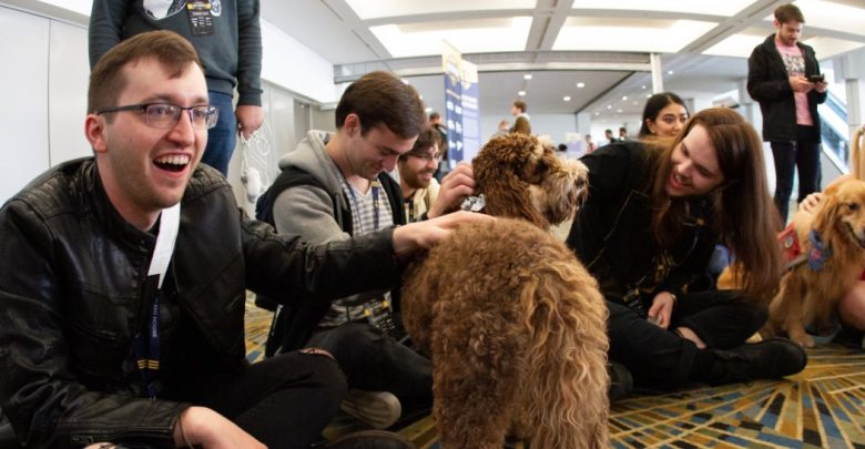 Attendees petting dogs at The Big House