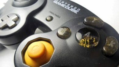 Photo of Someone Put a Wasp in a GameCube Controller