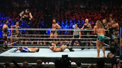 Photo of WWE Survivor Series Recap and Review