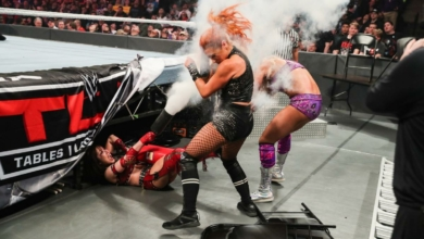 Photo of Chasing One Falls: WWE TLC Recap and Review