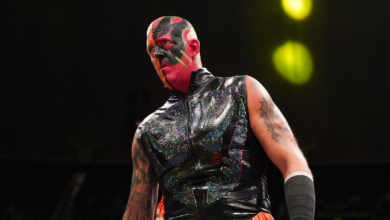 Photo of Dustin Rhodes: Wrestler of the Decade