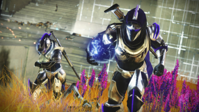 Photo of Destiny 2 Goes Dark as Bungie Scrambles to Repair Characters