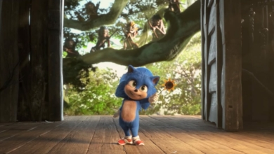 Photo of All the Questions I Have About Baby Sonic