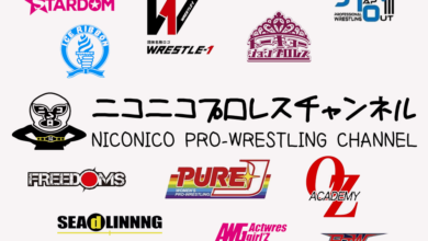 Photo of Japanese Wrestling Streaming Service Nico Pro Goes International