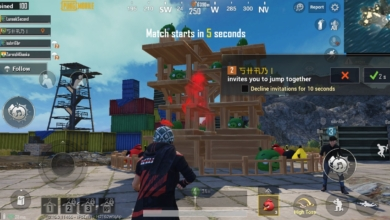 Photo of PUBG Mobile Angry Birds Crossover Has Players Angry for All the Wrong Reasons