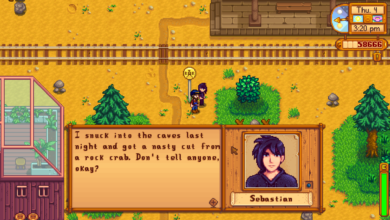Photo of Stardew Valley Sebastian Gift Guide – How to Romance Sebastian in Stardew Valley