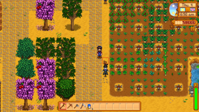 Photo of Stardew Valley Gifts Guide – Everyone's Favorite Gifts