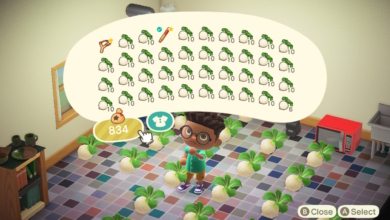 Photo of Animal Crossing: New Horizons Turnips Storage Guide – How to Store Turnips & Prevent Rot