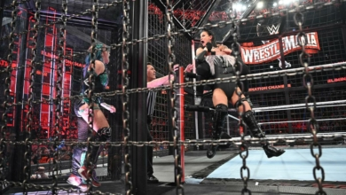 Photo of Two Miles of Chain But Not That Horny: WWE Elimination Chamber Recap and Review