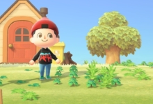 Photo of I Shouldn't Compare Myself to Others in Animal Crossing: New Horizons