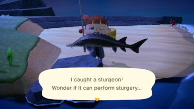 Photo of PSA: Here's All the Fish Leaving Animal Crossing: New Horizons Soon