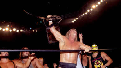 Photo of I Wish I Loved Any Wrestler the Way I Love Lex Luger