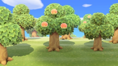 Photo of Animal Crossing: New Horizons Trees Guide – All Tree & Wood Types, Bamboo Tree Info