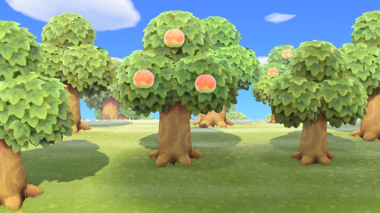 Animal Crossing New Horizons Trees Guide All Tree Wood Types Bamboo Tree Info