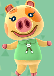 animal crossing maggie